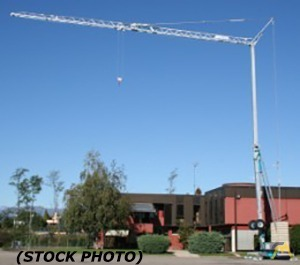 Vicario V-1566/55 2-Ton Tower Crane